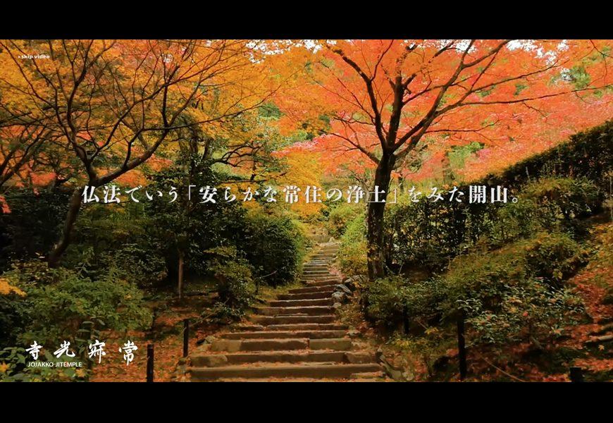 秋MOVIE