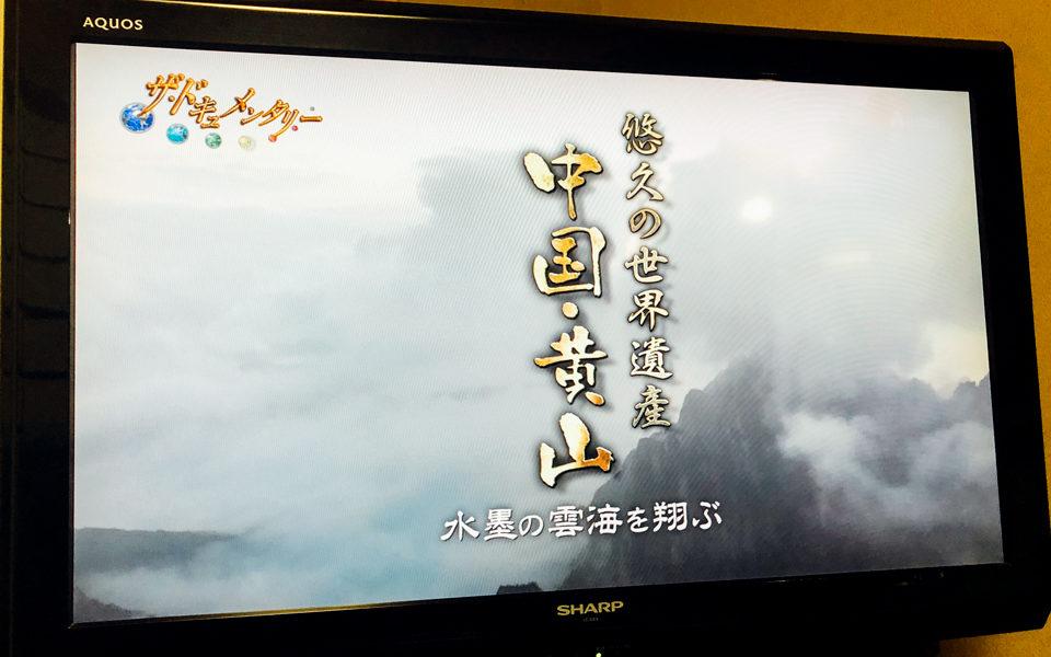 高野さんテレビ番組